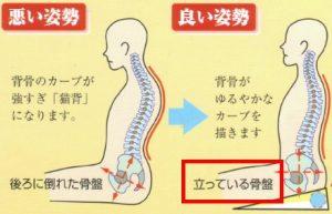 lower-back-pain 腰痛専門治療家が腰痛のメカニズム、治し方、再発しないためのシンプルセルフケアを解説