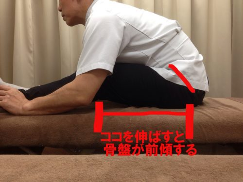 stretch-for-hip-e1515035044727 股関節の筋肉を効果的にストレッチして腰痛を悪化させない方法