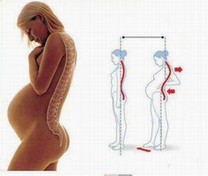 ninpu-e1487206592923 妊婦の腰痛対策。プロが教える緊張と歪みを取る2つのエクササイズ