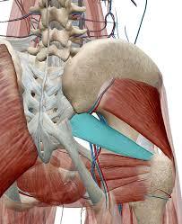 lowerback-pain 腰痛による足のシビレの原因とシビレを減らすセルフケア