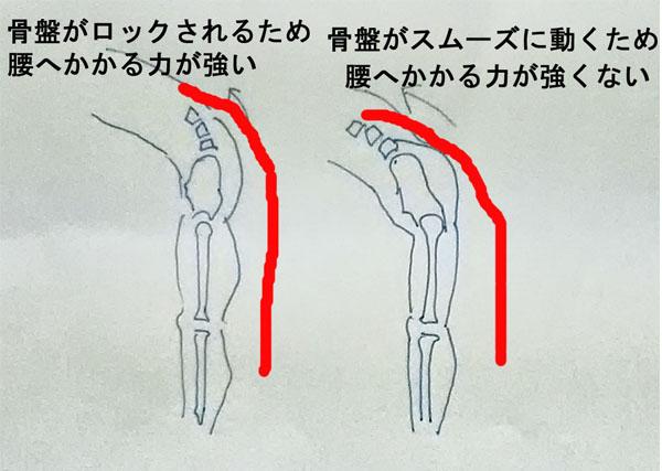 stretch-hip 股関節のストレッチが腰痛改善のカギ